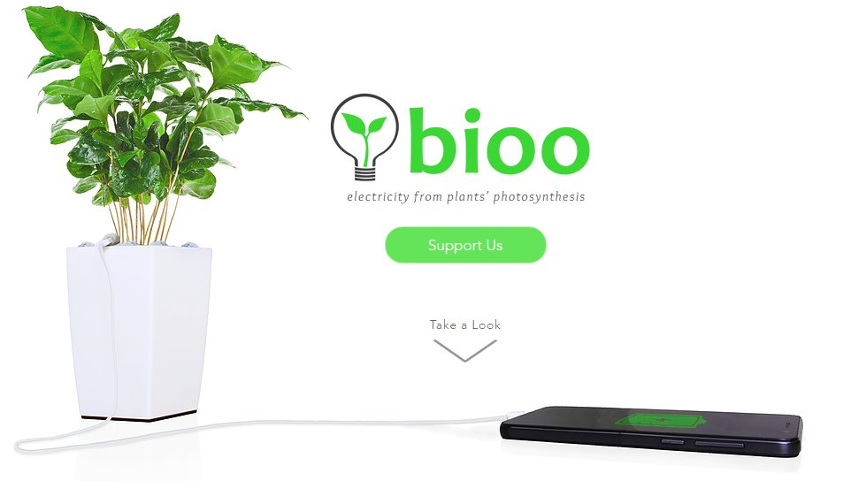 Bioo - the startup that's merging nature and technology